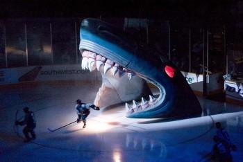 Shark_head