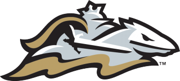 3391_charlotte_knights-cap-2014