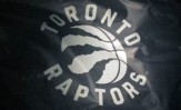 Toronto Raptors New Logo 2015-16