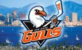 SD Gulls 2015