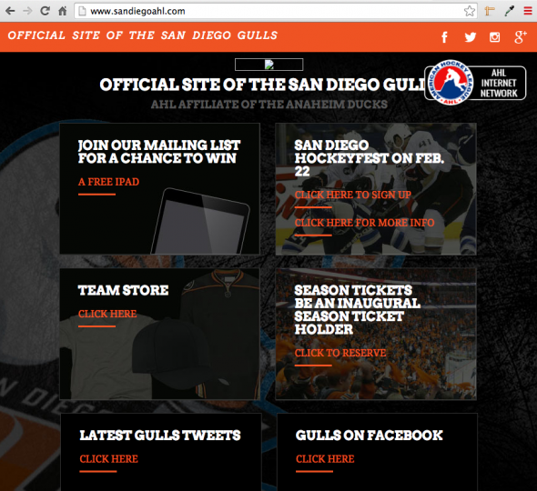 The new name of the San Diego AHL team was leaked on their own website earlier today