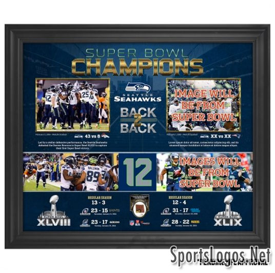 Seattle Seahawks Super Bowl XLIX Phantom Champions Collage