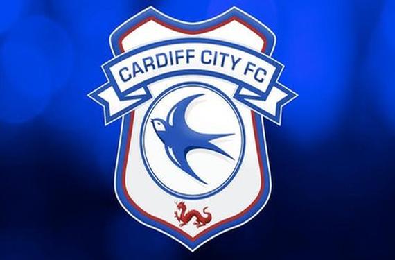 Cardiff City Blue