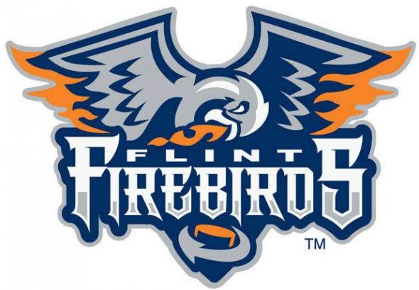 Flint Firebirds Logo