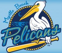 Pelicans-header