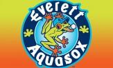 aquasox-header