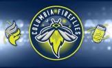 fireflies-header