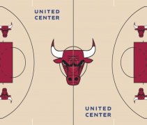 Bulls Court Feature