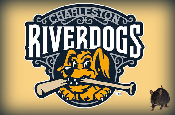 Aw, Rats! The Story Behind the Charleston RiverDogs