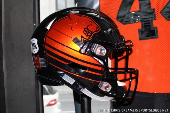 BC Lions Helmet