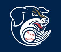 Saltdogs-header
