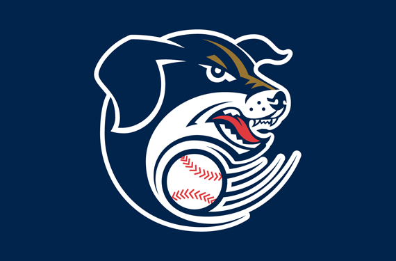 Back to the Salt Mines: The Story Behind the Lincoln Saltdogs