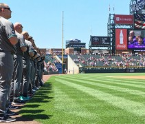 Dbacks-Grey-Header