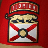 Panthers sleeve patch