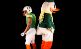 Oregon Ducks puddles f