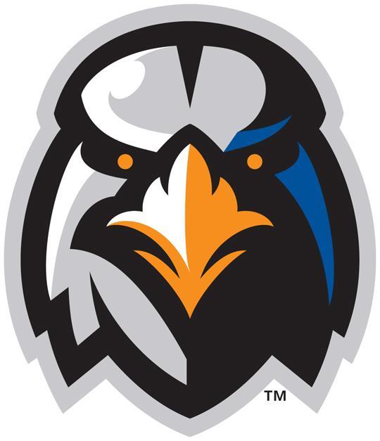 aberdeen-ironbirds-new-logo-2