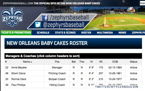 "Team name changed to ""Baby Cakes"" both above the top banner and for the section header"