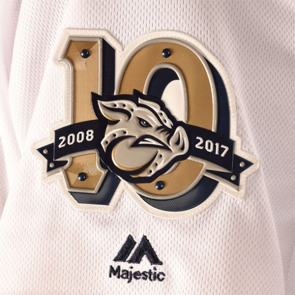 IrongPigs 10th season logo