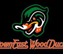 Down East Wood Ducks Logo