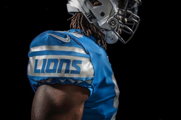 Lions 2017 1