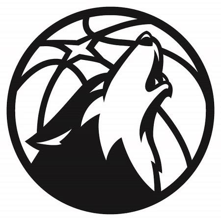 MTimberwolves_Partial-2017