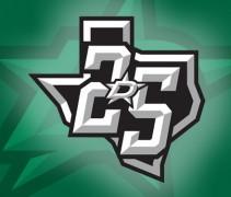 Dallas Stars 25th Anniversary Logo