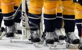 Stanley Cup Socks