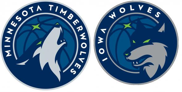 iowa wolves comparison