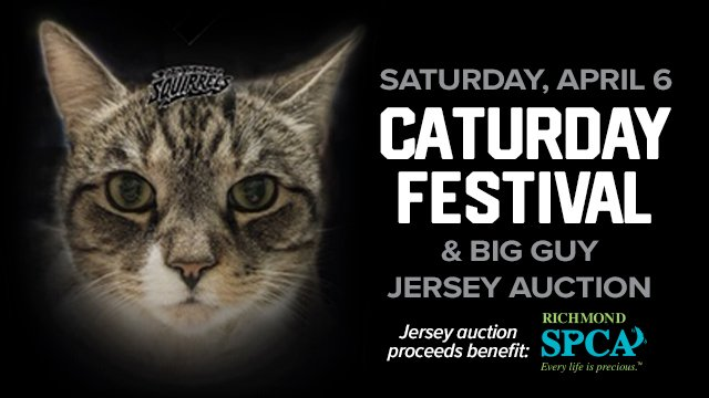 Richmond Flying Squirrels help cats find a home with