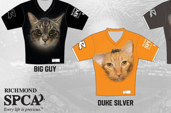 Richmond Flying Squirrels help cats find a home with promotional uniforms
