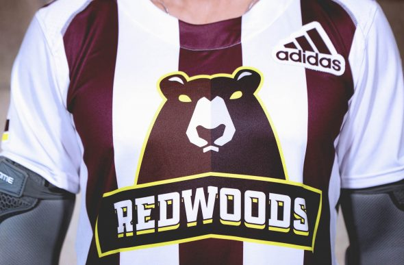 d0e87cdd4e2 The three vertical stripes are maroon (not black) and represent the trunks  of the trees we see on the green uniform.