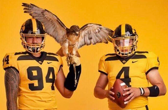 Iowa Hawkeyes Unveil Bold Gold Alternate Football Uniform