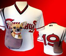reputable site 27d9e 472b9 Minor League Baseball | Chris Creamer's SportsLogos.Net News ...