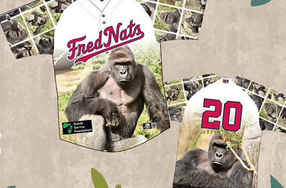 FredNats unveil jerseys commemorating beloved gorilla Harambe